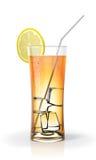 cocktail fresh juice 免版税库存图片