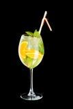 Cocktail frio Imagem de Stock