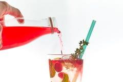 Cocktail frio da baga da hortelã em um estilingue isolado no branco Copie o espaço bebida de refrescamento do verão com uma palha fotos de stock