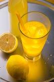 Cocktail frio para o verão Fotos de Stock Royalty Free