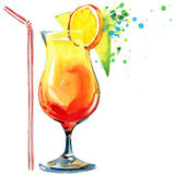 Cocktail fruit, ice and a splash. Hand drawn watercolor illustration Stock Image