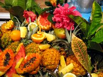 Cocktail fruits. Tropical cocktail fruits, decoration with flowers and leaves Stock Image