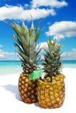 Cocktail fruttato dell'ananas sulla spiaggia sabbiosa Immagine Stock