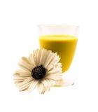 Cocktail giallo pieno di vetro e un fiore su un fondo bianco Immagine Stock