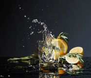 Cocktail gin-tonic with lemon slices and twigs of rosemary royalty free stock photo