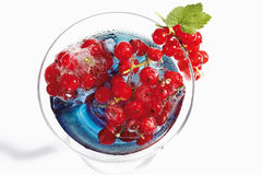 Cocktail glass with Blue Curacao and frozen red currants Stock Photography