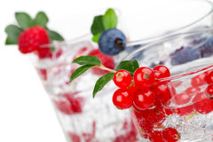 Cocktail with ice and berry Royalty Free Stock Photos