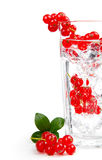 Cocktail with ice and berry Stock Photos