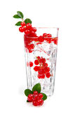 Cocktail with ice and berry Stock Photography
