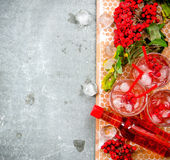 Cocktail with ice and ingredients on a stone tray .  Free space for text. Royalty Free Stock Photos