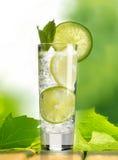 Cocktail im Garten lizenzfreie stockfotos