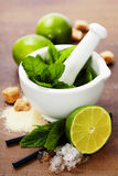 Cocktail ingredients. Ingredients for Caipirinha, Mojito Cocktails and other drinks Royalty Free Stock Image