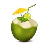 Cocktail in kokosnoot Royalty-vrije Stock Afbeelding