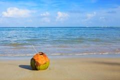 Cocktail in kokosnoot op Caraïbisch strand royalty-vrije stock afbeelding