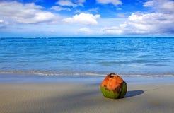 Cocktail in kokosnoot op Caraïbisch strand De achtergrond van de reis royalty-vrije stock foto