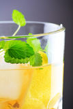 Cocktail with lemon Royalty Free Stock Photography