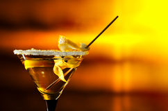 Cocktail with lemon Royalty Free Stock Image