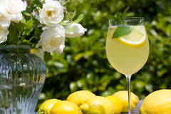 Cocktail with lemon slices outdoor Royalty Free Stock Image
