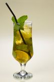 Cocktail lemonade. Fresh with mint and a lemon in a glass Royalty Free Stock Photos