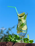 Cocktail with lime and peppermint leaves Stock Photos