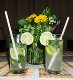 Cocktail mahito drink objects image Stock Photography