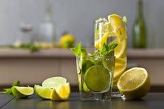 Cocktail met citrusvrucht en pepermunt Royalty-vrije Stock Foto