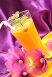 Cocktail met jus d'orange & munt Stock Foto