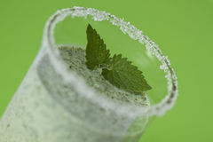 Cocktail with mint Royalty Free Stock Photos