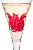 Cocktail mit Hibiscusblume Lizenzfreie Stockbilder