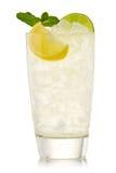 Cocktail mit Kalk und Zitrone Stockfotografie