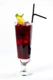 Cocktail mit Orange Lizenzfreies Stockfoto