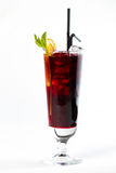 Cocktail mit Orange Lizenzfreie Stockbilder