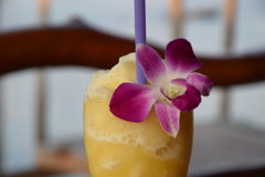Cocktail mit Orchideenblume lizenzfreies stockbild
