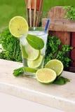 Cocktail Mojito fotografia stock libera da diritti