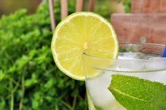 Cocktail Mojito fotografia stock