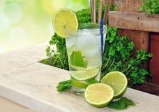 Cocktail Mojito fotografia de stock