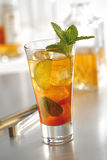 Cocktail Mojito Fidel stockbild