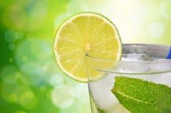 Cocktail Mojito Stockfoto