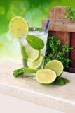Cocktail Mojito stock photos