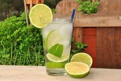 Cocktail Mojito royalty-vrije stock afbeelding
