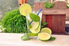 Cocktail Mojito stock foto