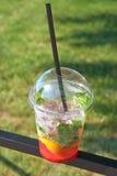 Cocktail op de aard Stock Afbeelding