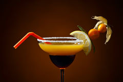 Cocktail with physalis,kumquat and lemon Royalty Free Stock Images