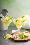 Cocktail régénérateur de margarita d'été Photo libre de droits