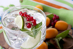 Cocktail. Refreshing lime and red currant garnished cocktail Royalty Free Stock Images