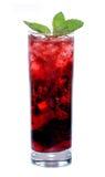 Cocktail rosso Immagini Stock
