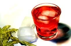 Cocktail rouge Photographie stock libre de droits