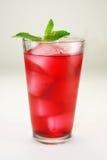Cocktail rouge régénérateur Bevera Photographie stock libre de droits