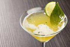 Cocktail saboroso foto de stock royalty free