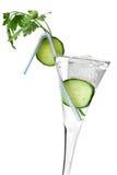 Cocktail sano fotografie stock